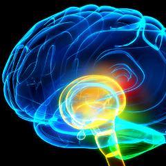 Schizophrénie : l'amélioration du diagnostic grâce à l'intelligence ...