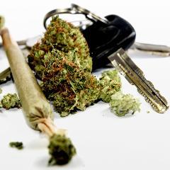 cannabis au volant les tests ne seraient pas fiables pour d tecter la consommation r cente. Black Bedroom Furniture Sets. Home Design Ideas