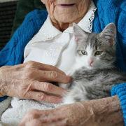 Alzheimer: les médicaments ne font plus nécessairement partie du traitement (HAS, France)