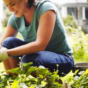 Perte de poids et santé: 2 changements d'habitudes qui ont le plus grand effet domino