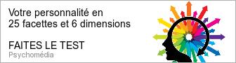 inventaire-personnalite-hexaco-336-90